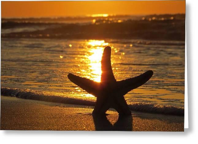 Daybreak Greeting Card