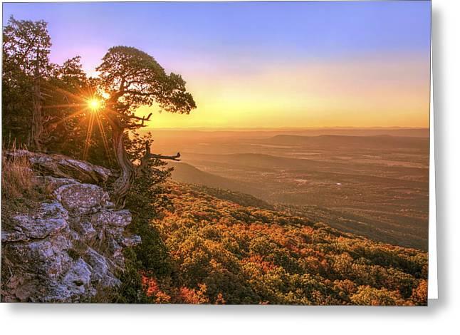 Daybreak On Mt. Magazine - Arkansas - Cedar Tree - Autumn Greeting Card by Jason Politte