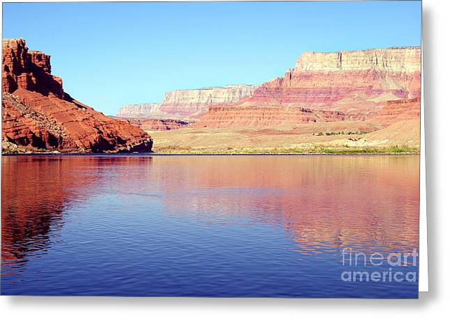 Daybreak - Vermillion Cliffs And Colorado River Greeting Card by Douglas Taylor