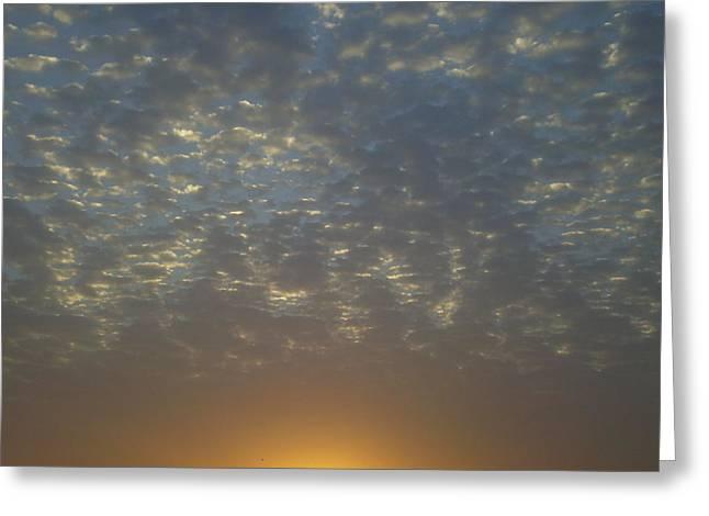 Daylight Awakening Greeting Card by Heather Jack