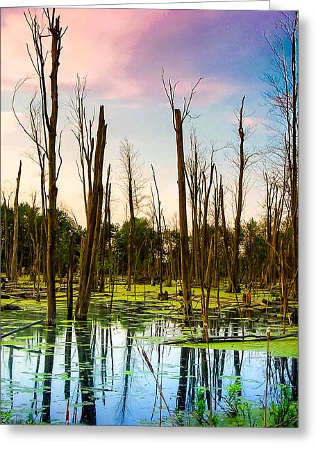 Daylight In The Swamp Greeting Card by Lars Lentz