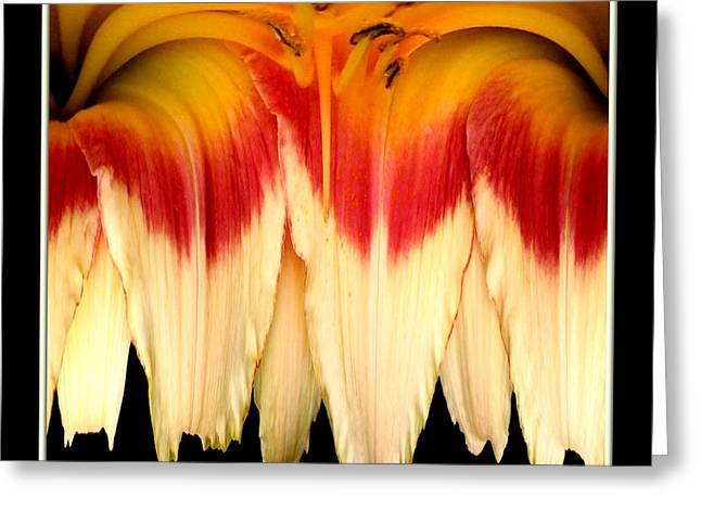 Daylily Flower Abstract 2 Greeting Card by Rose Santuci-Sofranko