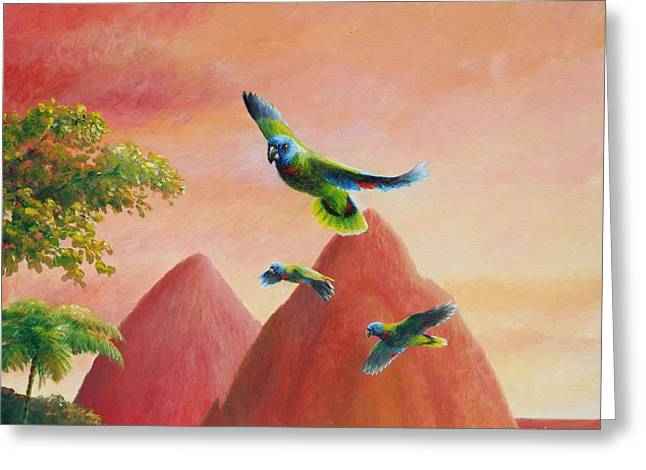 Day's End - St Lucia Parrots Greeting Card by Christopher Cox