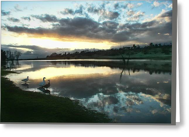 Days End At Horseshoe Lake  Greeting Card