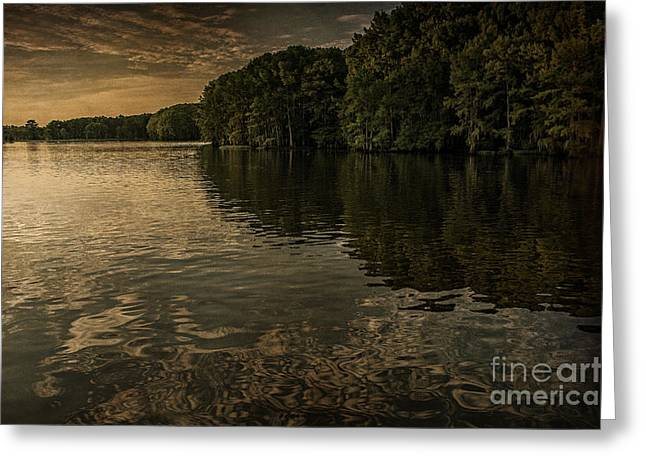 Days End On Caddo Lake Greeting Card by Tamyra Ayles
