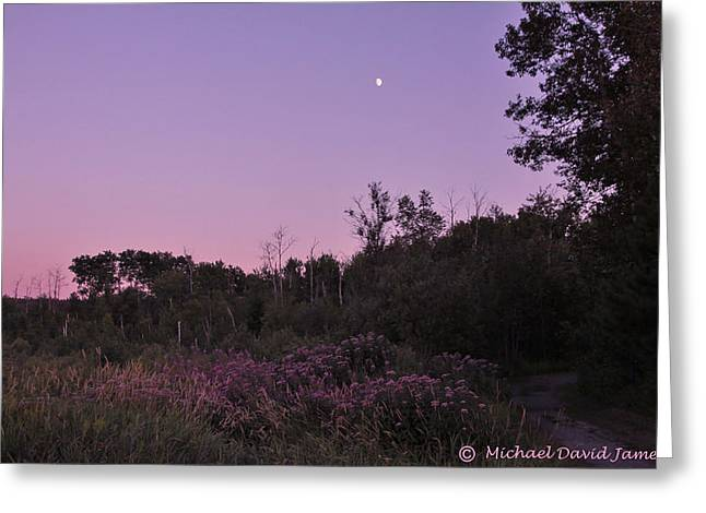 Day's Last Light Greeting Card by Michael David James