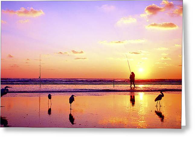 Greeting Card featuring the photograph Daytona Beach Fl Surf Fishing And Birds by Tom Jelen