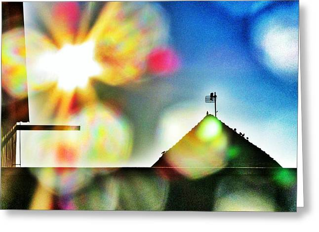 Dazzled By The Sun Greeting Card by Marianna Mills