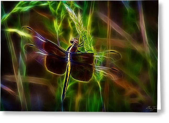 Dazzling Dragonfly Greeting Card by Barry Jones