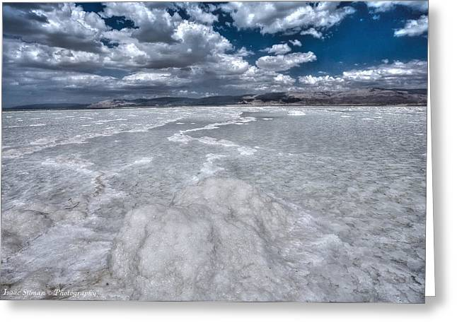 Dead Sea Greeting Card by Isaac Silman