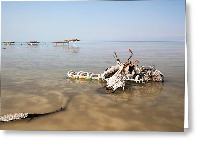 Dead Sea Greeting Card by Photostock-israel