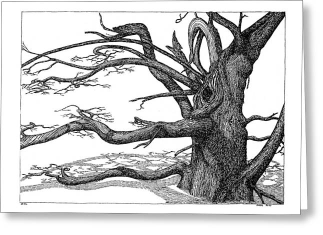 Greeting Card featuring the drawing Dead Tree by Daniel Reed