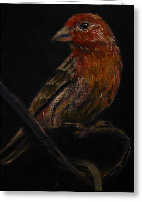 Deans Bird Greeting Card by Sherry Robinson