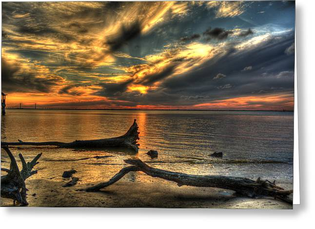 Death By Tide Greeting Card by Greg and Chrystal Mimbs