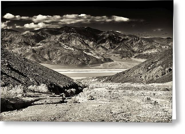 Death Valley Brown Tone Greeting Card