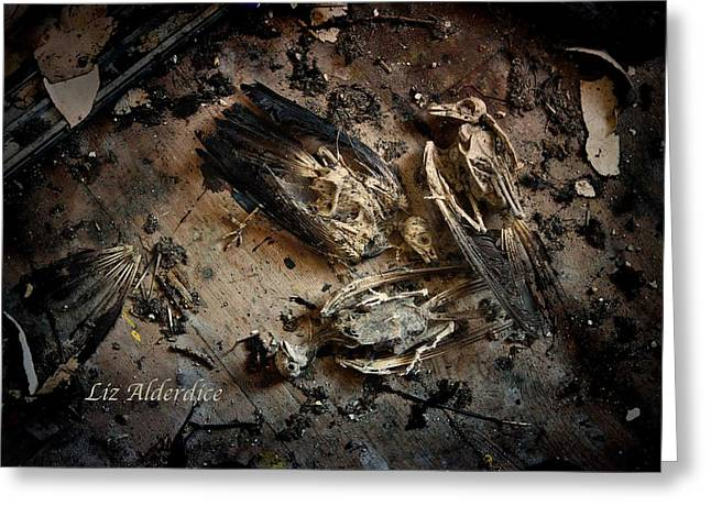 Greeting Card featuring the photograph Deathly Hallows by Liz  Alderdice