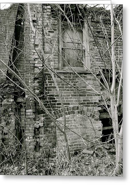 Decay Greeting Card by Azthet Photography