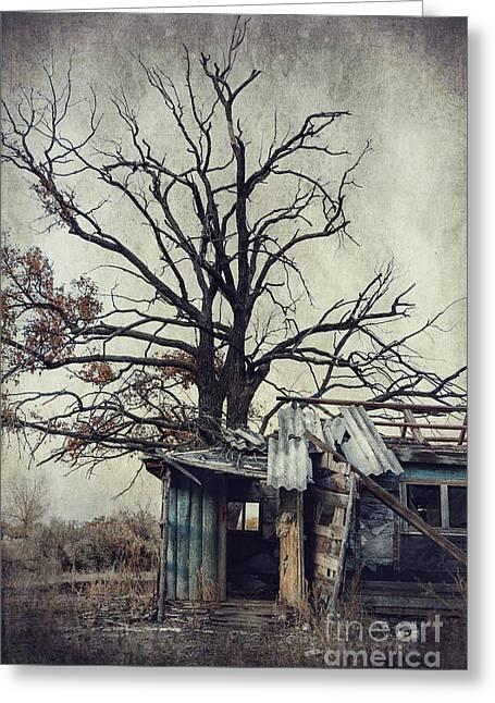Decay Barn Greeting Card by Svetlana Sewell