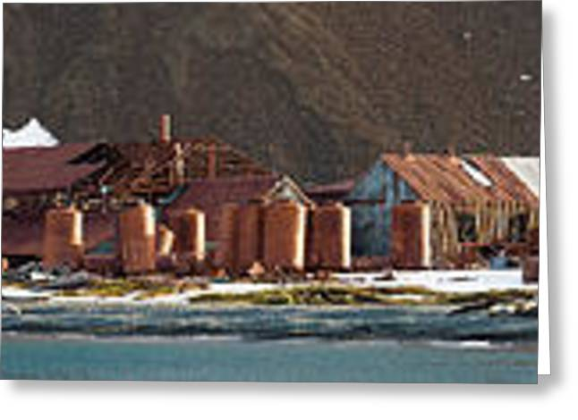 Decaying Whaling Station On The Beach Greeting Card by Panoramic Images