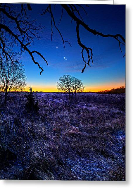 December Blues Greeting Card by Phil Koch