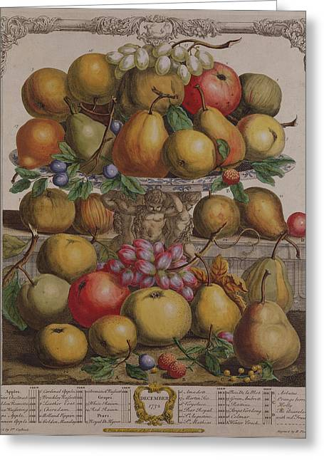 December, From Twelve Months Of Fruits, By Robert Furber C.1674-1756 Engraved By Henry Fletcher Greeting Card