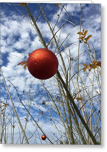 Greeting Card featuring the photograph December by Jean Marie Maggi