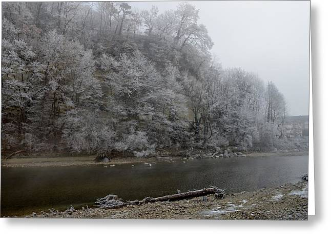 Greeting Card featuring the photograph December Morning On The River by Felicia Tica
