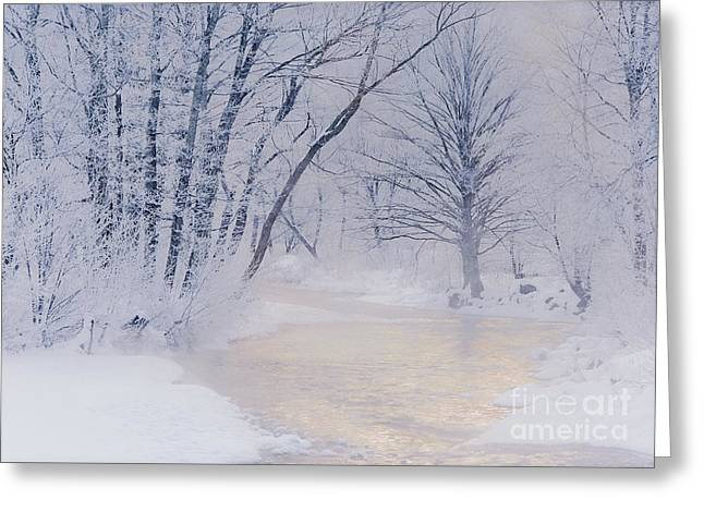 December Riverscape Greeting Card by Alan L Graham