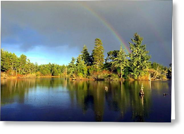 Decembers Double Rainbow Greeting Card by Kristal Talbot