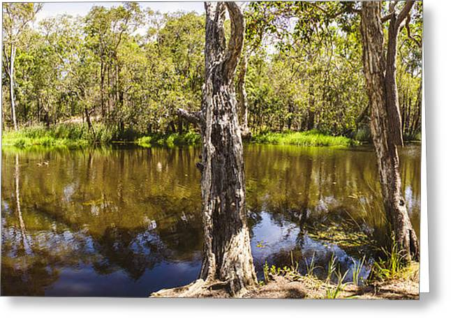 Deception Bay Creek Greeting Card by Jorgo Photography - Wall Art Gallery