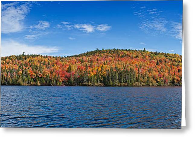 Deciduous Forest Reflection In An Lake  Greeting Card