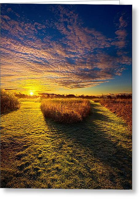 National geographic greeting cards page 5 of 77 fine art america decisions greeting card m4hsunfo
