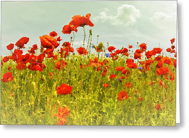 Decorative-art Field Of Red Poppies Greeting Card by Melanie Viola