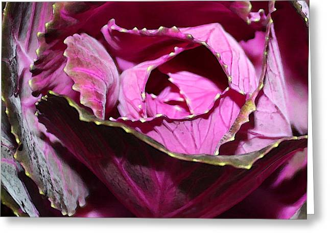 Decorative Cabbage Greeting Card by Mary Bedy