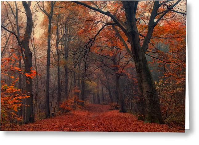 Decorative Forrest Greeting Card