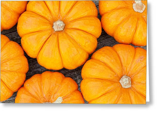 Decorative Pumpkins  Greeting Card by Alexey Stiop