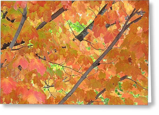 Deep Autumn Wcae  Greeting Card by Lyle Crump