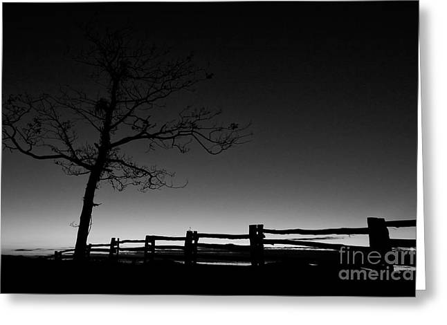 Deep Blue Dawn On The Blue Ridge Parkway Bw Greeting Card