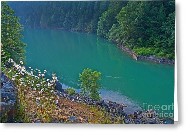 Deep Green River Near Ross Lake Washington In Forest Greeting Card by Valerie Garner