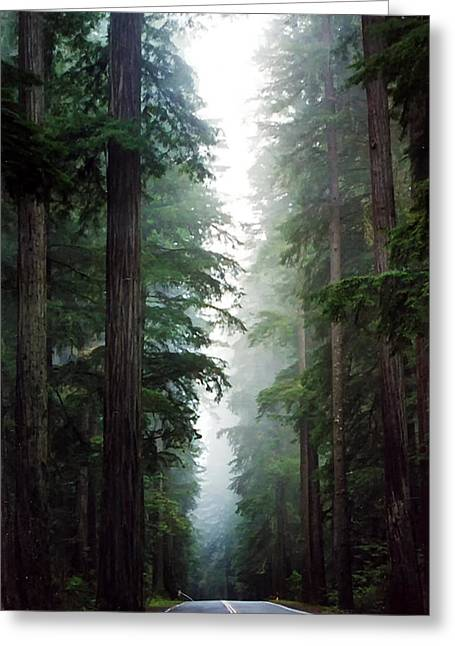 Deep In The Forest Greeting Card