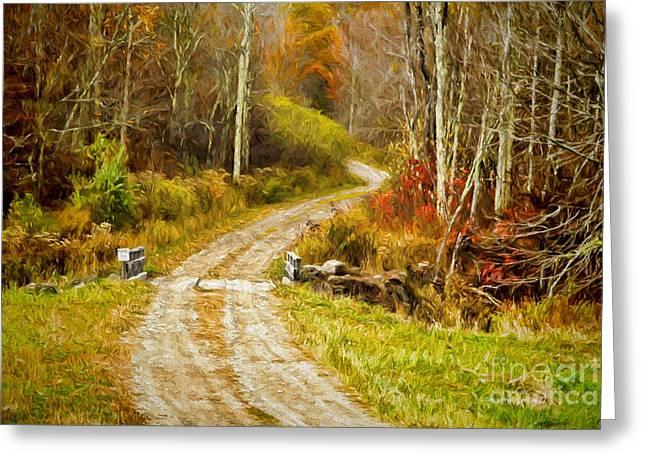 Deep In The Woods Greeting Card by Deborah Benoit