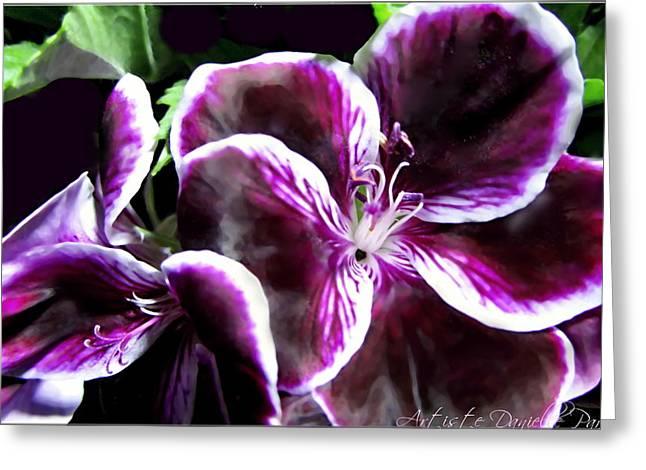 Deep Purple Vibrant Flower Macro Greeting Card by Danielle  Parent