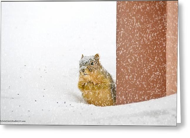 Deep Snow Greeting Card by LeeAnn McLaneGoetz McLaneGoetzStudioLLCcom