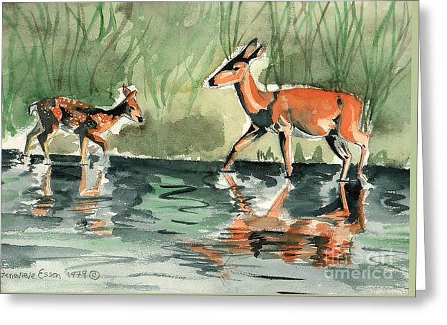 Deer At The River Greeting Card by Genevieve Esson