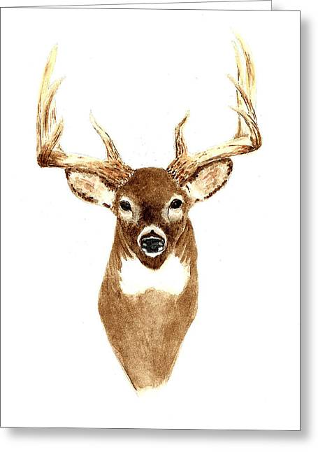 Deer - Front View Greeting Card by Michael Vigliotti