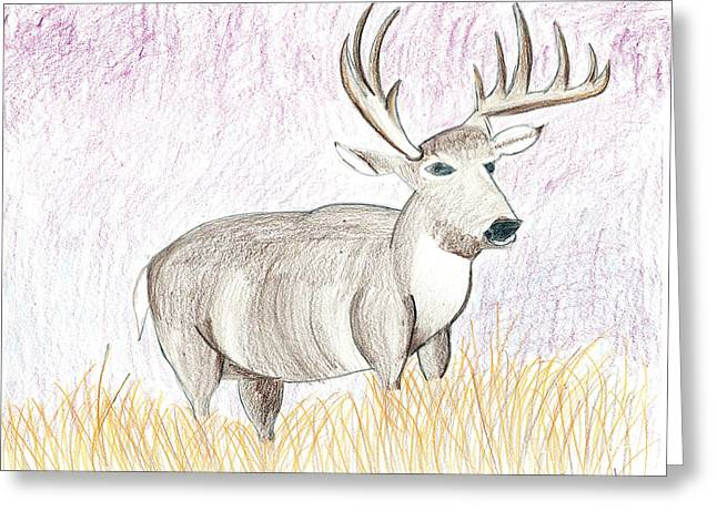 Greeting Card featuring the drawing Deer In The Grass At Dusk by Fred Hanna