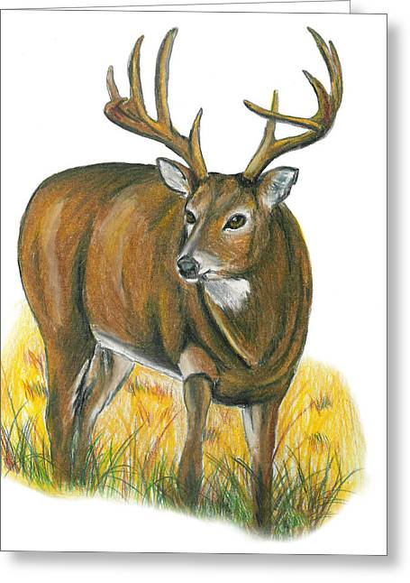 Deer Me Greeting Card by Crystal Robinson