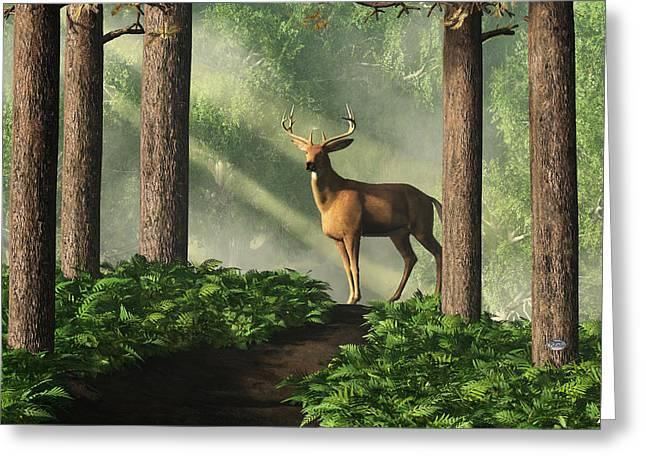 Deer On A Forest Path Greeting Card by Daniel Eskridge