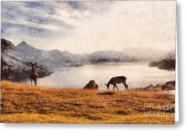 Deer On Mountain At Dusk Greeting Card by Pixel Chimp