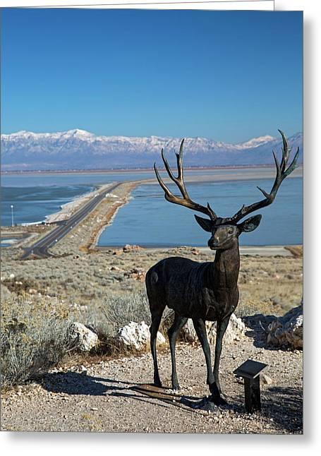 Deer Sculpture Greeting Card by Jim West